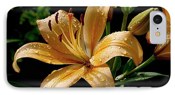 The Orange Lily IPhone Case