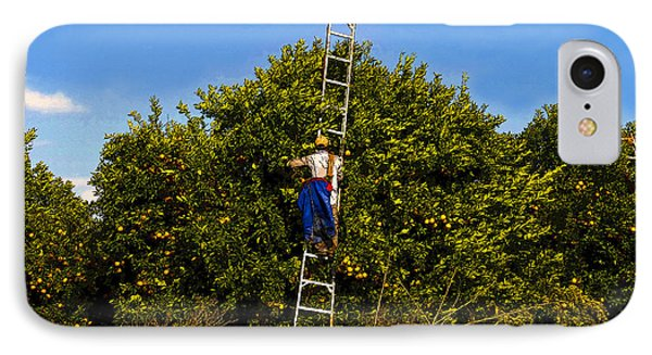 The Orange Picker Phone Case by David Lee Thompson