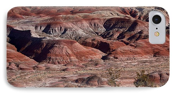 The Painted Desert  8062 Phone Case by James BO  Insogna