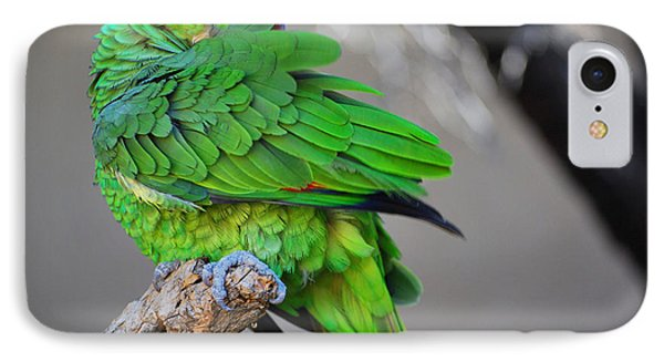 IPhone Case featuring the photograph The Parrot by Donna Greene