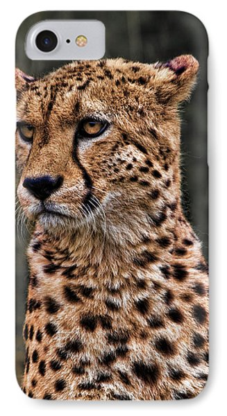 The Pensive Cheetah Phone Case by Chris Lord