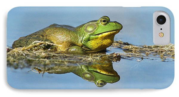 The Pond King Phone Case by Mircea Costina Photography
