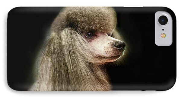 The Poodle Is A Breed Of Dog, One Of The Most Common Breeds In The Present. IPhone Case