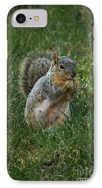 The Praying Squirrel IPhone Case