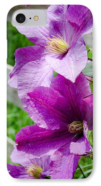 The Purple Flowers IPhone Case by Amy Turner