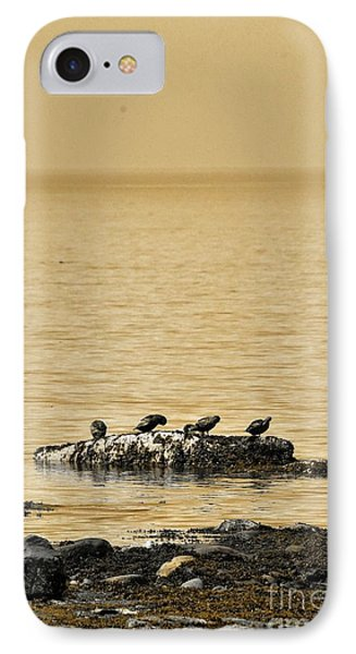 IPhone Case featuring the photograph The Quatuor - Gold by Aimelle