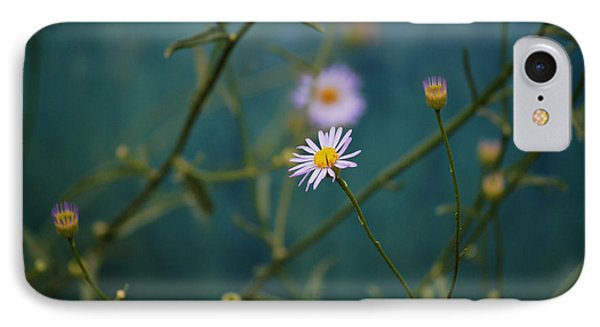 IPhone Case featuring the photograph The Quiet Aster by Douglas MooreZart