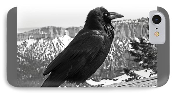 The Raven - Black And White IPhone Case by Rona Black