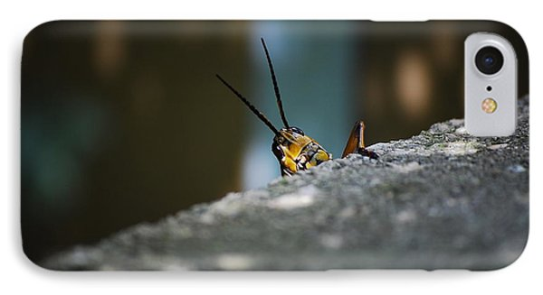 The Real Hopper IPhone Case by Robert Meanor