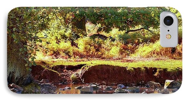 The River Lin , Bradgate Park IPhone Case by John Edwards