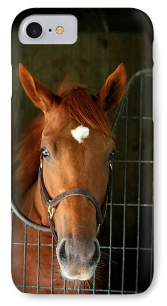The Roan IPhone Case by Cathy Harper