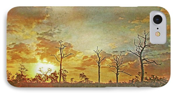 The Sentinels - Florida Sunrise By Hh Photography IPhone Case