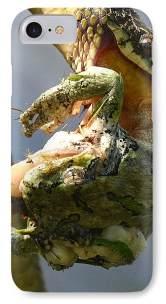 The Serpent And The Frog IPhone Case