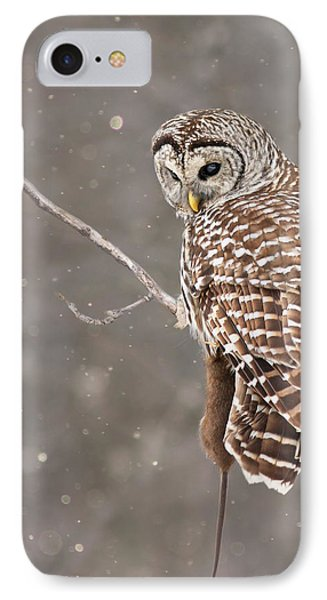 The Silent Hunter IPhone Case by Mircea Costina Photography