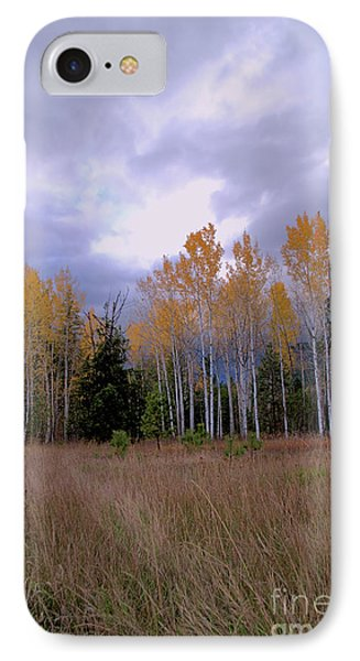 The  Song Of The Aspens 2 IPhone Case by Victor K