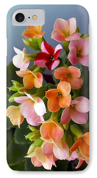 IPhone Case featuring the photograph The Special One by Danielle R T Haney