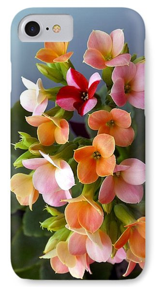 The Special One IPhone Case by Danielle R T Haney