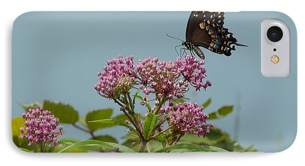 IPhone Case featuring the photograph The Spicebush Swallowtail Of Prettyboy Reservoir by Donald C Morgan