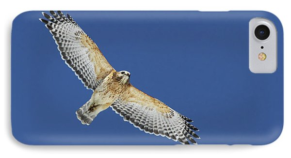 The Spirit Of The Hawk IPhone Case