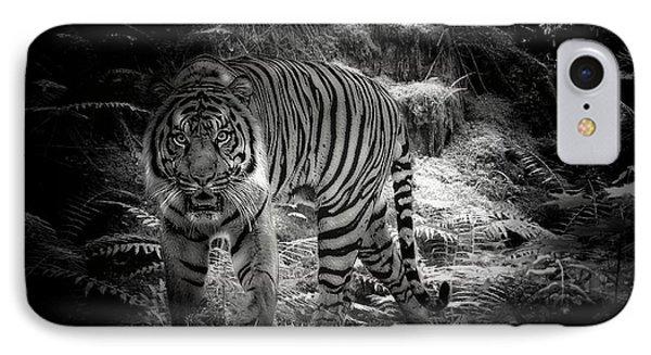 Sumatran Tiger  IPhone Case