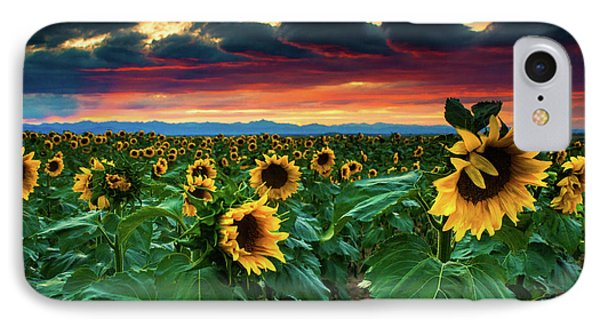 The Summer Winds IPhone Case by John De Bord