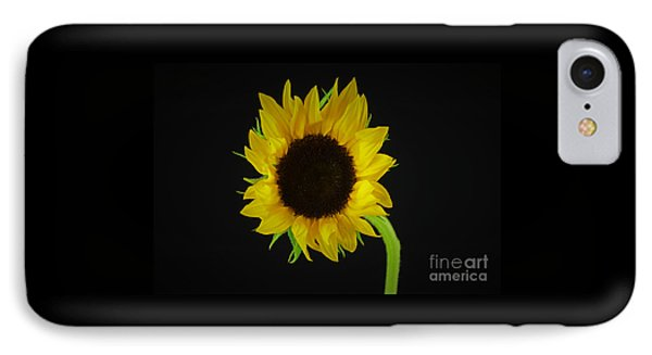 The Sunflower IPhone Case by Ray Shrewsberry