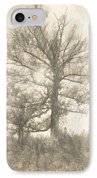 The Sycamore IPhone Case by Dan Sproul