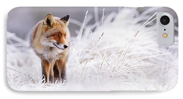 The Thinker - Red Fox In A Wintery Landscape IPhone Case