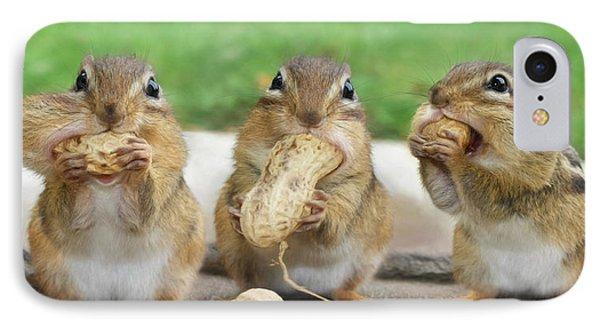 Squirrel iPhone 7 Case - The Three Stooges by Lori Deiter