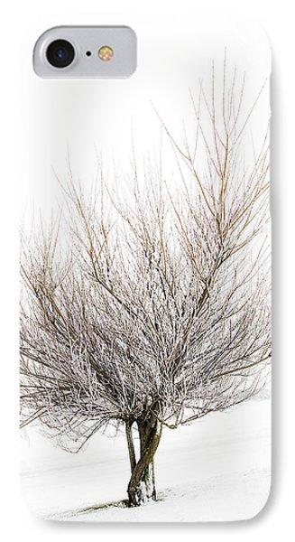 The Tree Phone Case by Svetlana Sewell