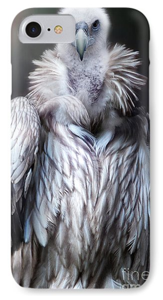 IPhone Case featuring the photograph The Vulture by Christine Sponchia