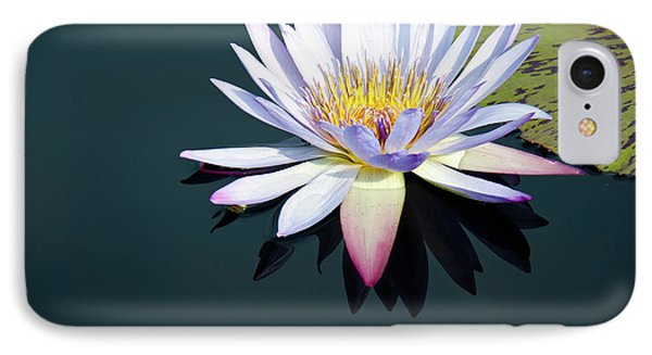 IPhone Case featuring the photograph The Water Lily by David Sutton