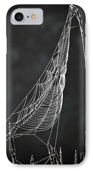 IPhone Case featuring the photograph The Web by Tom Cameron