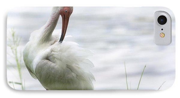 The White Ibis  IPhone Case by Saija  Lehtonen