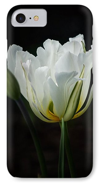 The White Tulip IPhone Case by Richard Cummings