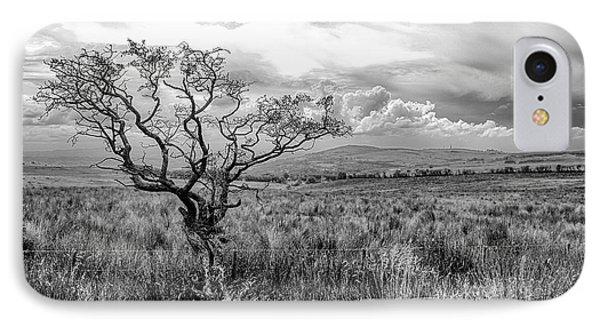 The Windswept Tree IPhone Case