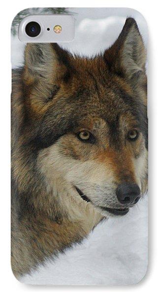 The Wolf 2 Phone Case by Ernie Echols