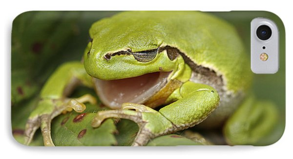 The Yawning Tree Frog IPhone Case by Roeselien Raimond