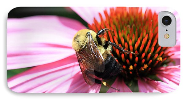 Think Bees IPhone Case by Paula Guttilla