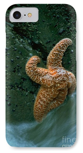 This Starfish Has A Good Grip Phone Case by Sven Brogren