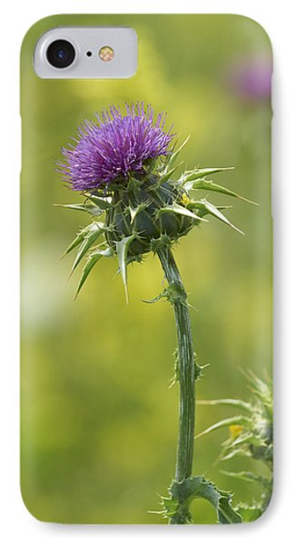 Thistle And Mustard Phone Case by Doug Herr