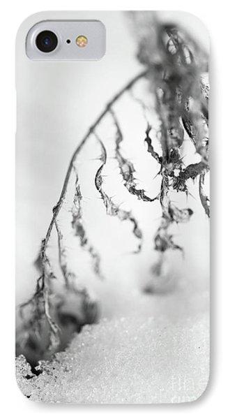 Thistle In Snow Phone Case by Gabriela Insuratelu