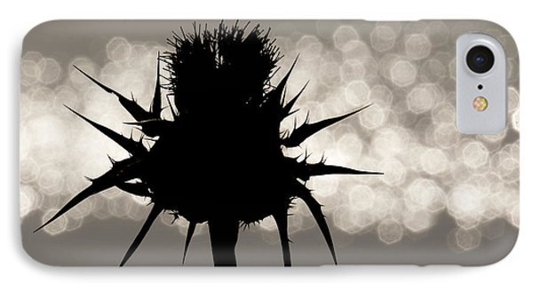 Thistle Silhouette - 365-11 IPhone Case by Inge Riis McDonald
