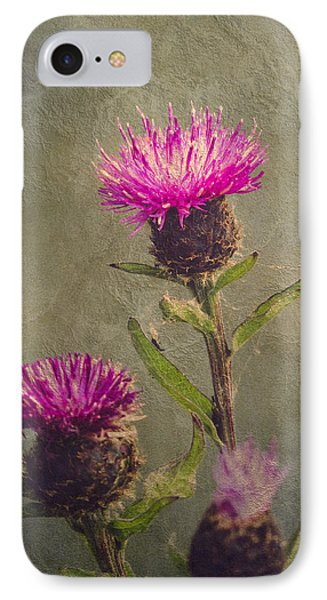 Thistle IPhone Case by Wim Lanclus