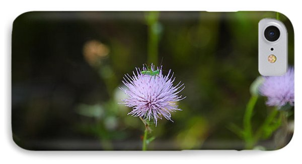 Thistles Morning Dew IPhone Case by Christopher L Thomley