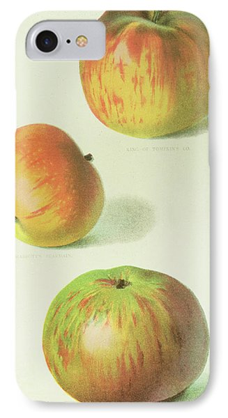 Three Apples IPhone Case by English School