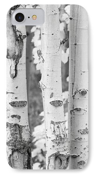 Three Aspens In Black And White  Phone Case by James BO  Insogna