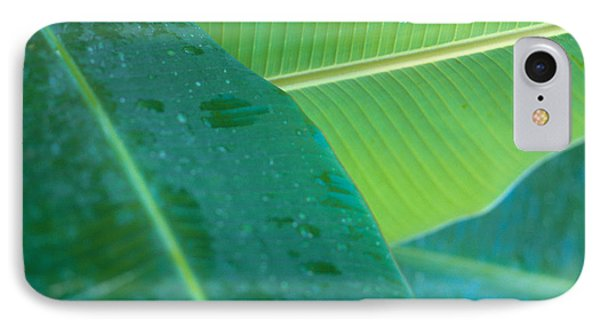 Three Banana Leaves Phone Case by Dana Edmunds - Printscapes