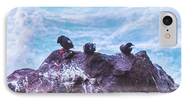 IPhone Case featuring the photograph Three Birds by Jonny D