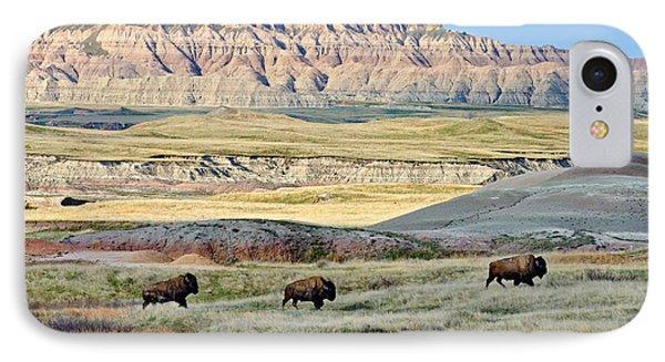 Three Bison Bulls IPhone Case